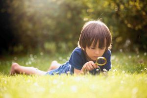 Boy lying on grass looking through a magnifying glass