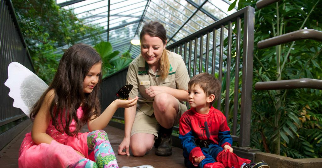 Girl holding butterfly watched by zoo keeper and small boy
